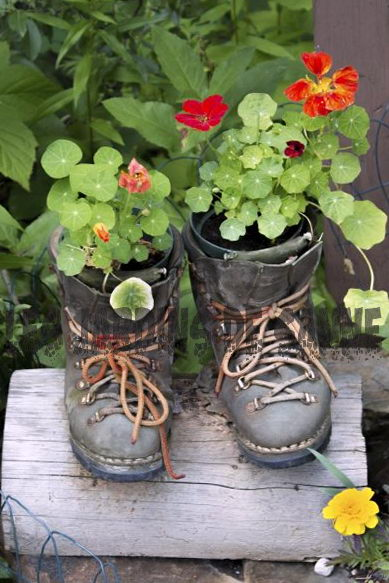 Tuin-upcycling-ideeën: leer meer over upcycling in de tuin
